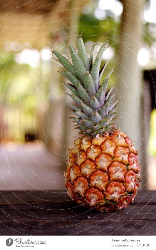 Viñales. (I) Lebensmittel Frucht Ernährung Essen Büffet Brunch Picknick Bioprodukte Vegetarische Ernährung Diät exotisch Ananas Ananasplantage Ananasblätter