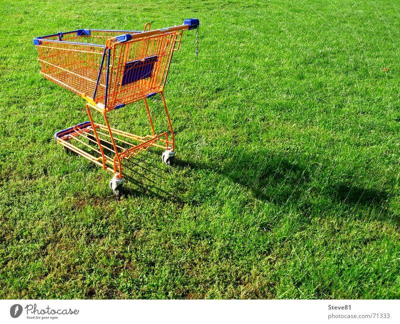 Öko Shopping 1 Natur grün blau Wiese Gras Lebensmittel orange Freizeit & Hobby Perspektive Industriefotografie Spaziergang Handel Rolle Supermarkt Einkaufswagen