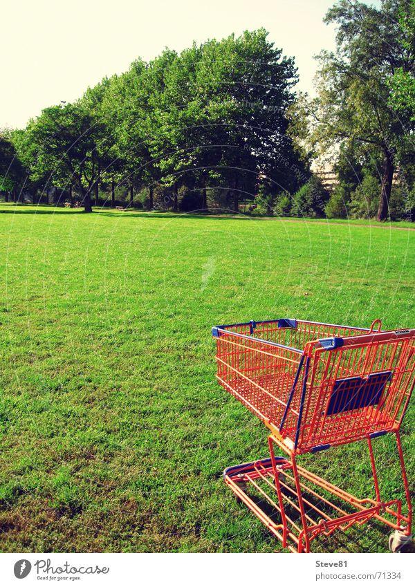 Öko Shopping 2 Natur grün blau Wiese Gras Lebensmittel orange Freizeit & Hobby Perspektive Industriefotografie Spaziergang Handel Rolle Supermarkt Einkaufswagen