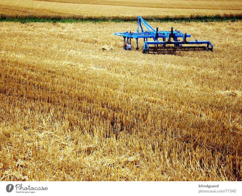 Die Arbeit ist getan. Weizen Sommer Physik Schweiß Kaugummi Feld Horizont Ähren Arbeit & Erwerbstätigkeit Arbeitsgeräte abschneiden Subvention Zerstörung