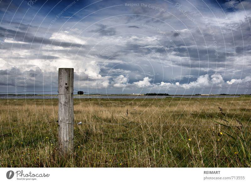Dänemark Natur Landschaft Himmel Wiese Feld Fjord Gefühle Stimmung Ehrlichkeit Freiheit Farbfoto Außenaufnahme Menschenleer Tag Licht Weitwinkel