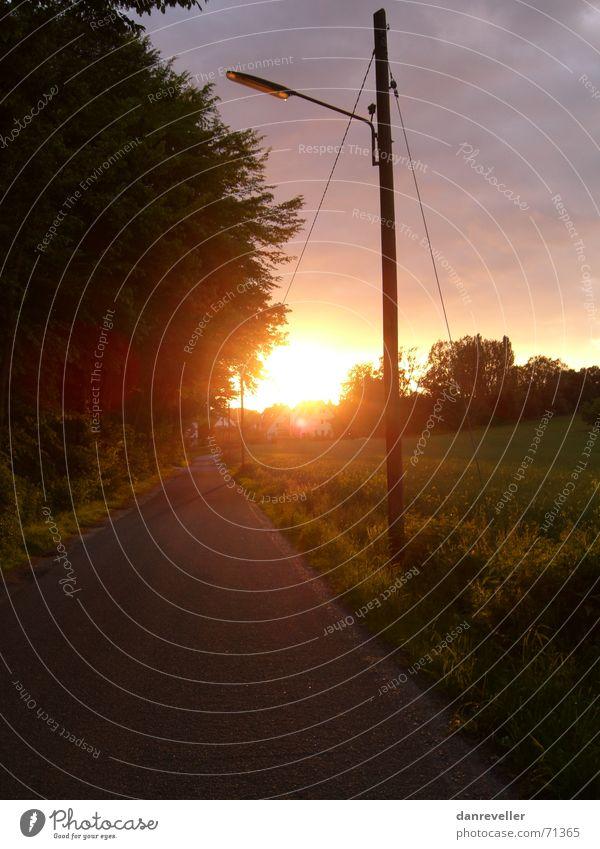 Sunset Route Einsamkeit Sonnenuntergang Telefonmast Wald Wiese Dorf Wolken Fernweh Asphalt Blatt Dorfwiese Nest grün Kuhdorf Kleinstadt Abend Wäldchen Waldwiese