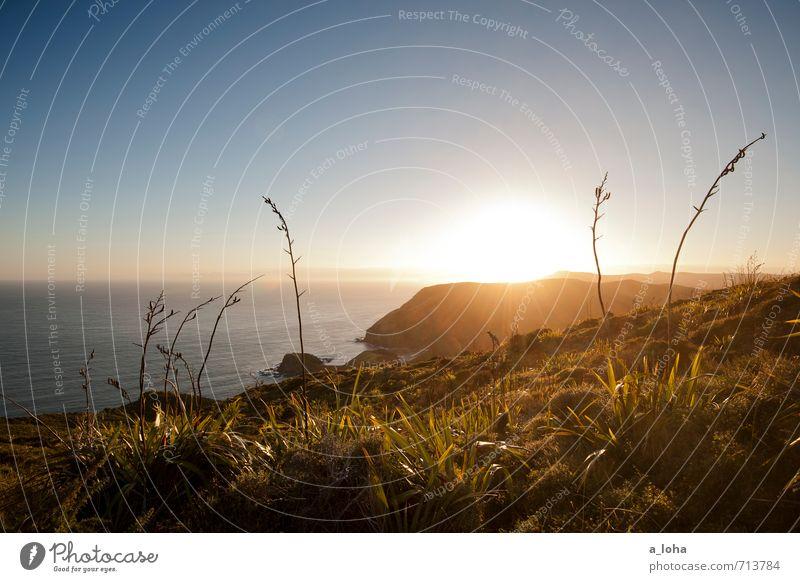 Let The Sunshine In Umwelt Natur Landschaft Pflanze Urelemente Wasser Wolkenloser Himmel Sonnenaufgang Sonnenuntergang Sonnenlicht Sommer Gras Felsen Küste Meer