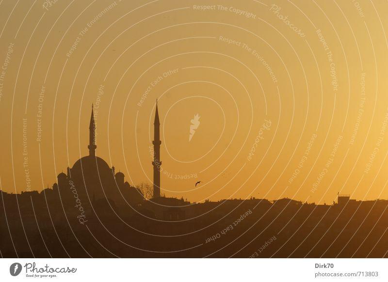 Abendlicht im Morgenland II Ferien & Urlaub & Reisen ruhig Ferne schwarz gelb Wärme grau Religion & Glaube orange leuchten ästhetisch Schönes Wetter