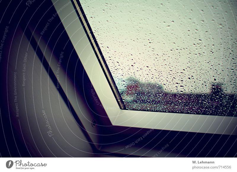 Fenster - Weiß - Tropfen Umwelt Wassertropfen Himmel Frühling schlechtes Wetter Regen Hilden Stadt Haus Klima Regenwasser Fensterscheibe Farbfoto Innenaufnahme