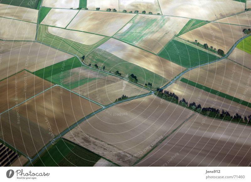 Thueringen am Sonntag Baum Sonne grün Straße Wiese Landschaft Linie Feld Luftaufnahme Sträucher Landwirtschaft Fußweg Bogen Thüringen Ackerboden