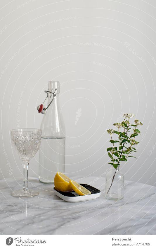 Am Marmortisch weiß Blume ruhig grau Stein hell Wohnung Raum Häusliches Leben Glas Trinkwasser einfach Tisch Sauberkeit Klarheit