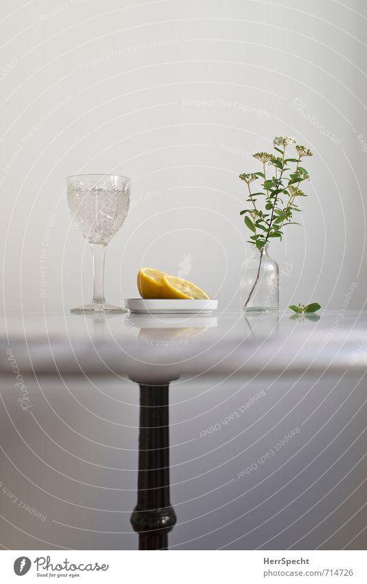 Am Marmortisch IV weiß Blume grau Stein Gesundheit Metall Wohnung Häusliches Leben Glas Trinkwasser frisch einfach Getränk Tisch Sauberkeit
