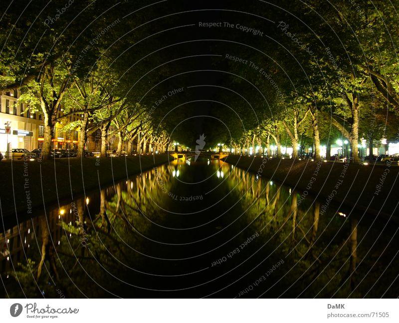 Kö-Graben Sonntag nachts Wasser grün Stadt ruhig dunkel Erholung Fluss Mitte Stadtzentrum Ente Düsseldorf