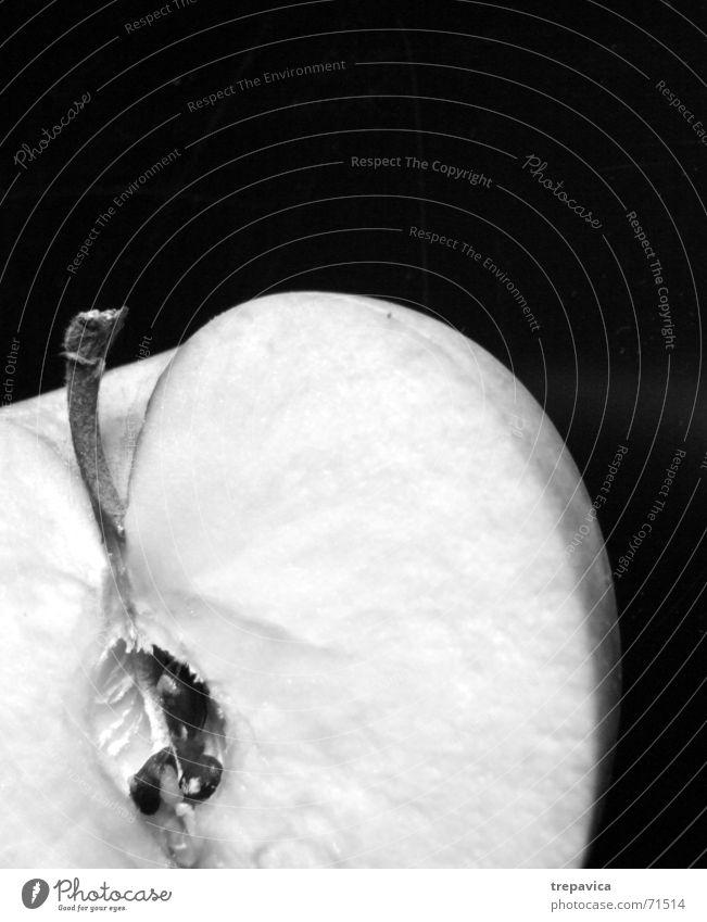 apfel II Natur Ernährung Gesundheit Frucht Sehnsucht Hälfte Vitamin Durchschnitt Anatomie vermissen fehlen