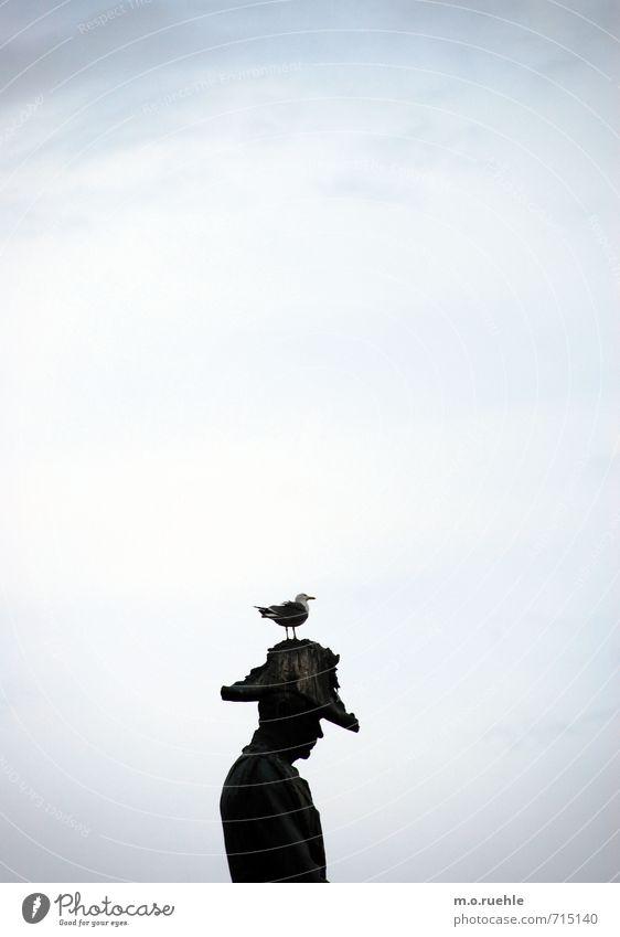 on top (podest III) Mensch Tier Vogel maskulin Denkmal Partnerschaft Möwe