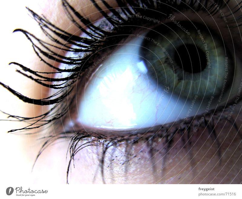 Augenblick blau grün schön schwarz Farbe Auge Gefühle grau Stil träumen Erde See glänzend Tor Momentaufnahme Fantasygeschichte