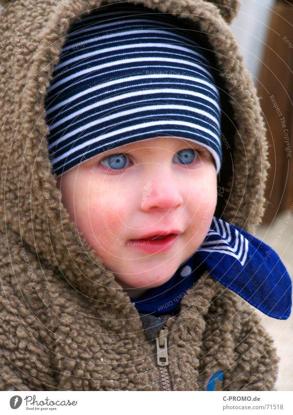 Augenblick der Begeisterung Kind Winter Gesicht Herbst kalt Junge Nase Kleinkind Mütze Schwäche staunen Jungpflanze Halstuch