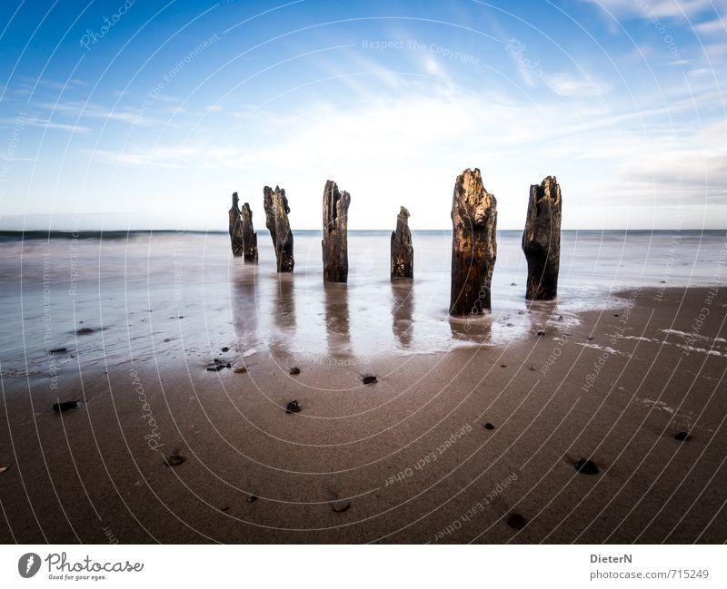 Lücken Himmel blau weiß Wolken Strand Küste braun Horizont Schönes Wetter Ostsee Sandstrand Gischt Buhne steinig