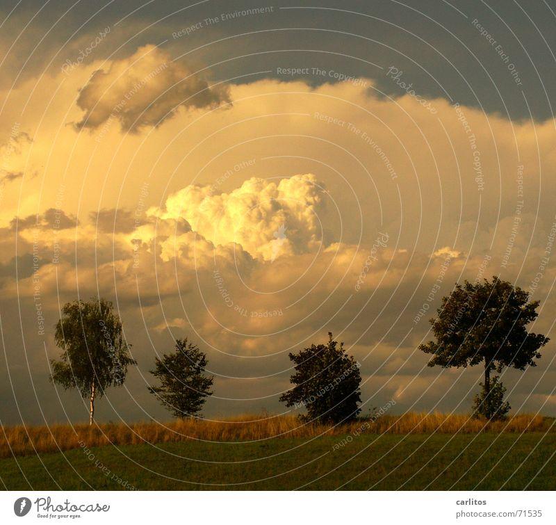 cloud number nine Himmel Wolken Glück Landschaft Zufriedenheit Frieden Wolkenbild