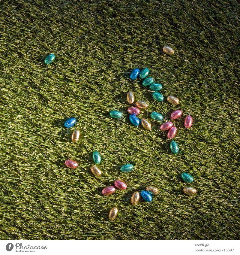 Ostereiersuche erfolgreich beendet Süßwaren Schokolade Ernährung Essen Freude Feste & Feiern Ostern Frühling Gras entdecken Fröhlichkeit Glück Zufriedenheit