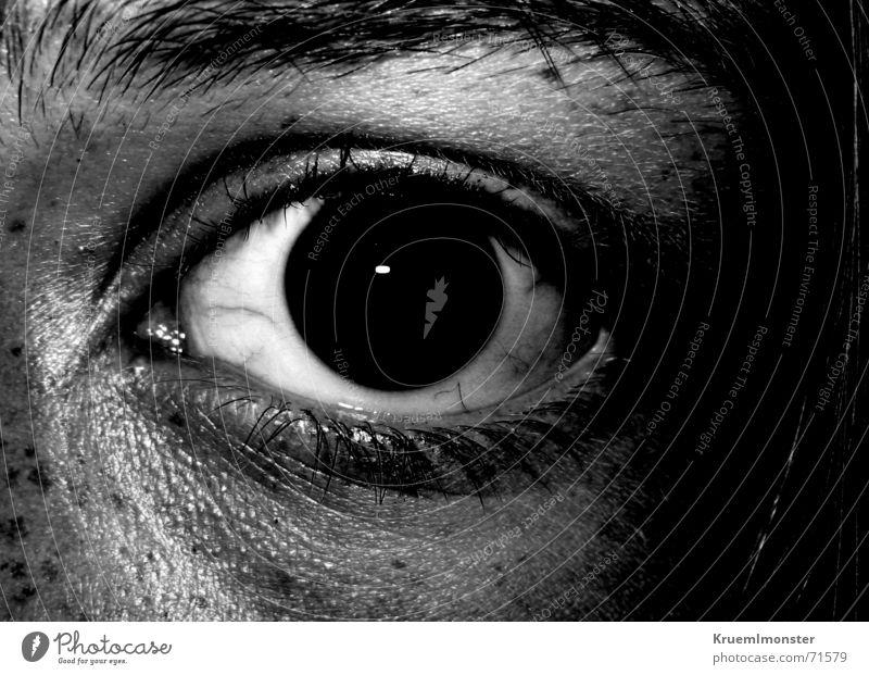 Entsetzung weiß schwarz Auge dunkel Traurigkeit Angst Trauer böse Sommersprossen Wimpern Augenbraue Gefäße Entsetzen Pupille gerissen Schweiß