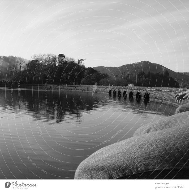 kai mauer See Kniehose Wasserstand Unterwasseraufnahme Seemann Kniescheibe Einsamkeit geduldig Anlegestelle schwarz Baum Hose Reflexion & Spiegelung ruhig