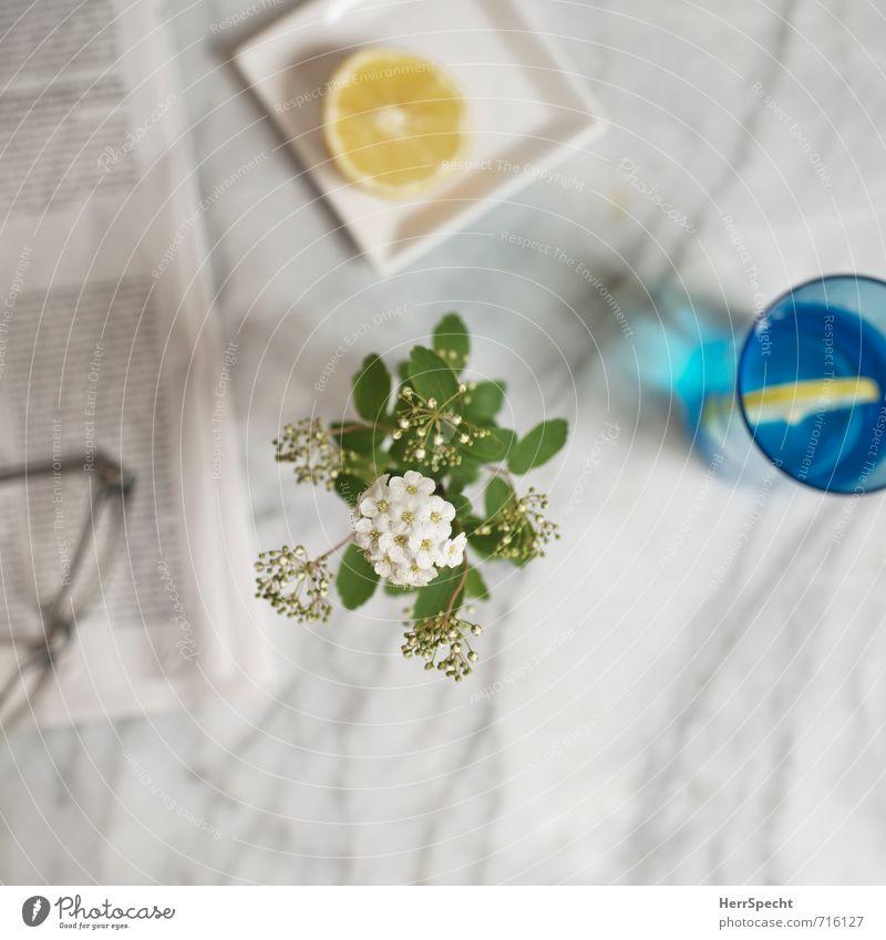 Am Marmortisch II weiß Blume grau Wohnung Häusliches Leben Glas Trinkwasser einfach Getränk Tisch Brille lesen Blumenstrauß Zeitung Stillleben Alltagsfotografie