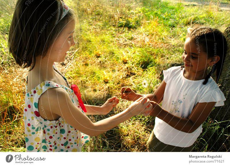 beide hände reich ich dir Kind Natur Hand dunkel Wiese Spielen hell Kleid Zopf