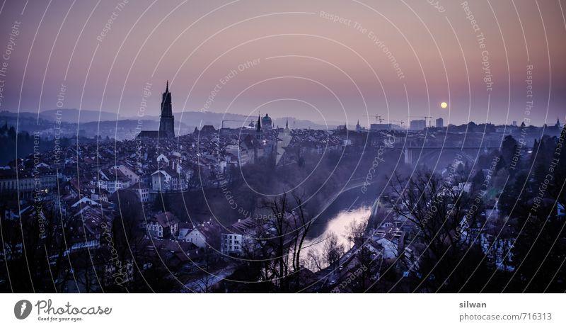 dunstig-schön ... Stadt Hauptstadt Stadtzentrum Haus Dom Turm alt ästhetisch glänzend groß grau violett rosa schwarz Ende Vergänglichkeit Rosengarten