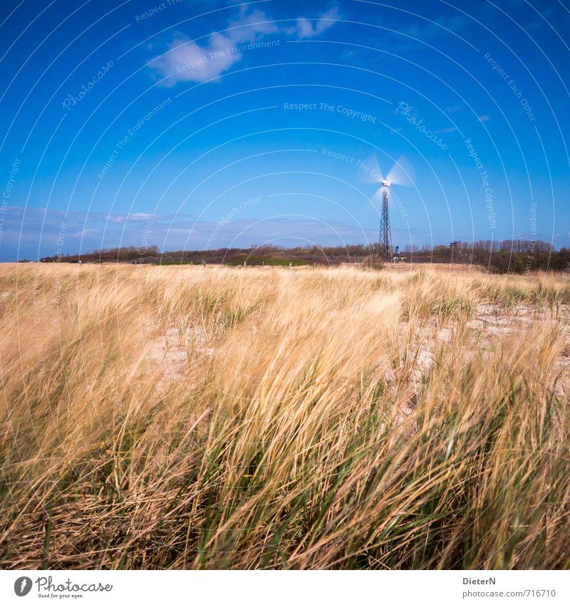 Energie Strand Sand Ostsee blau gelb Mecklenburg-Vorpommern Wustrow Windrad Wald Gras Stranddüne Wolken Himmel Farbfoto Außenaufnahme Menschenleer
