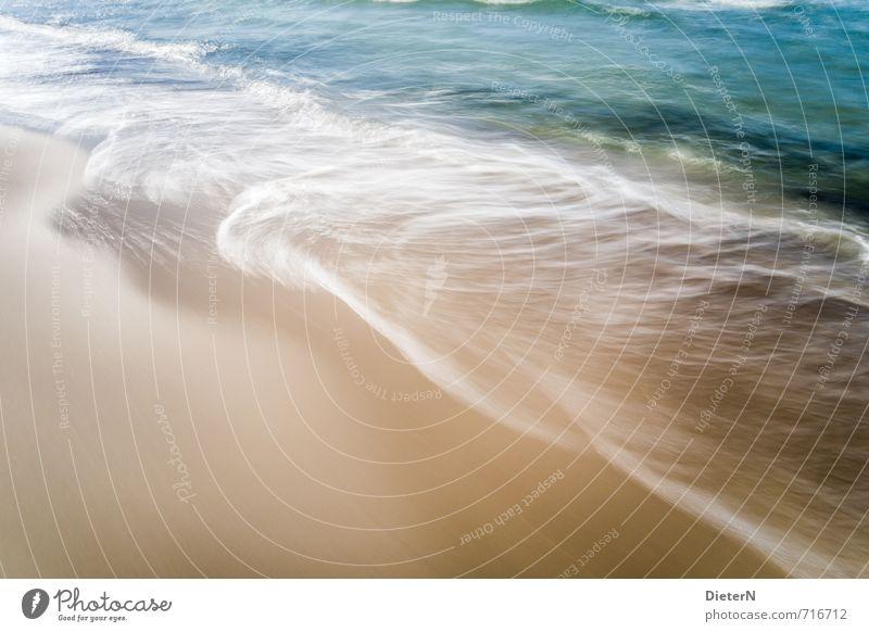 Wasser Strand Meer Sand Ostsee blau gold weiß Mecklenburg-Vorpommern Wustrow Wellen Schaum Gischt Farbfoto Außenaufnahme Menschenleer Textfreiraum links