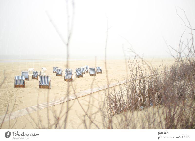 Vorvorsaison Natur Landschaft Sand Wasser Himmel Sträucher Küste Strand Nordsee Meer Insel frei frisch ruhig Ruhepunkt Strandkorb Spiekeroog Ostfriesland