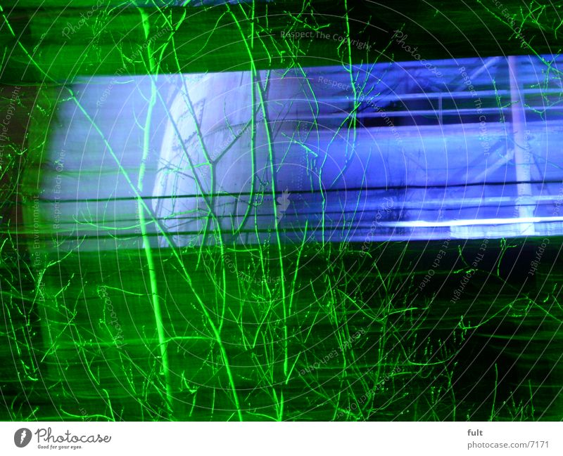 busch grün blau Stil Bewegung Beleuchtung Sträucher Ast Dynamik Ruhrgebiet Schwung Nachtaufnahme Duisburg Landschaftspark Duisburg-Nord