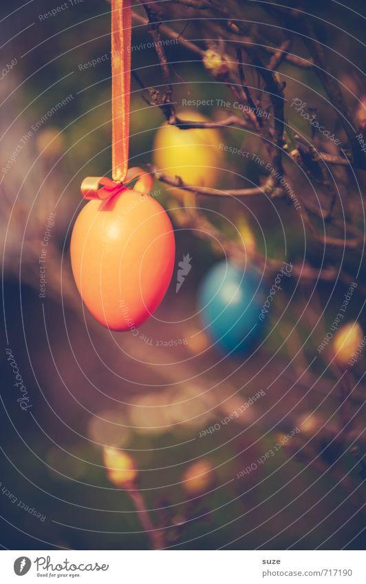 Eier, wir brauchen Eier! schön rot Frühling Stil klein Glück Feste & Feiern braun Freizeit & Hobby Lifestyle Dekoration & Verzierung Sträucher Fröhlichkeit Kreativität niedlich retro