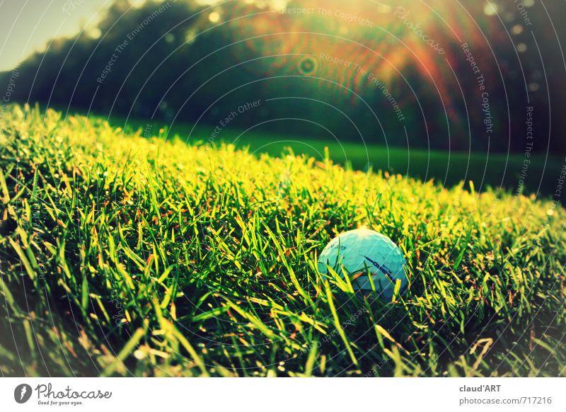 Golfball in der Sonne Natur grün Wiese Sport Gras Freizeit & Hobby Business Erfolg Lebensfreude sportlich Ball trendy Reichtum Golf Begeisterung Ballsport