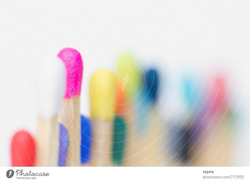 in der reihe stehen Holz mehrfarbig rosa Reihe Brennpunkt verschwimmen herausragen Streichholz Streichholzkopf Zusammensein Zusammenhalt Vorderseite Vielfältig