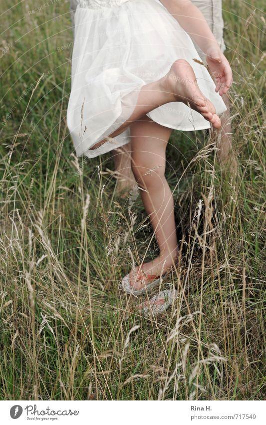 Das piekst ! [ III ] Mensch Mädchen 3-8 Jahre Kind Kindheit Umwelt Natur Sommer Gras Wiese Kleid Flipflops stehen grün weiß Freude Lebensfreude Barfuß Reinigen