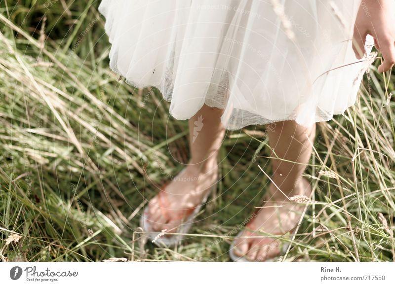 SommerZeit Mädchen 1 Mensch 3-8 Jahre Kind Kindheit Umwelt Natur Gras Wiese Kleid Flipflops hell natürlich grün weiß Lebensfreude Farbfoto Außenaufnahme