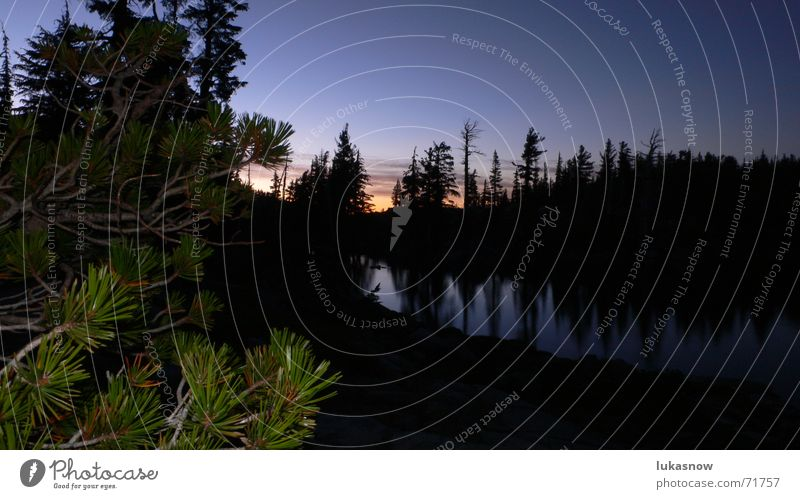 Desolation Valley 2 Tanne Fichte See Sonnenuntergang Wald Gegenlicht Reflexion & Spiegelung Glätte wandern ruhig träumen Ferien & Urlaub & Reisen