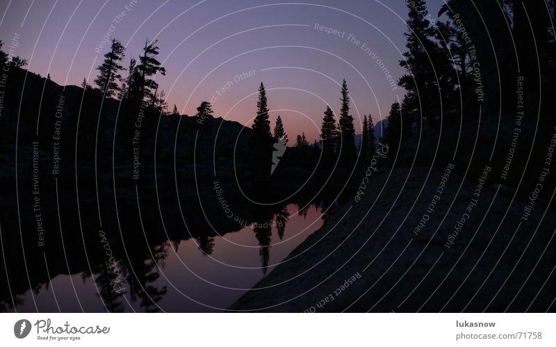 Desolation Valley 3 Sonnenuntergang Abenddämmerung Tanne Baum Fichte Reflexion & Spiegelung ruhig träumen Ferien & Urlaub & Reisen Berge u. Gebirge Kontrast