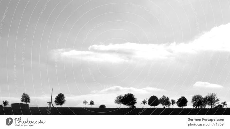 provinz, skyline II Baum Wolken Feld Sommer Nachmittag Samstag Einsamkeit Landwirtschaft Wiese Wald flach Elektrizität Energiewirtschaft Haus Dorf Himmel Wind