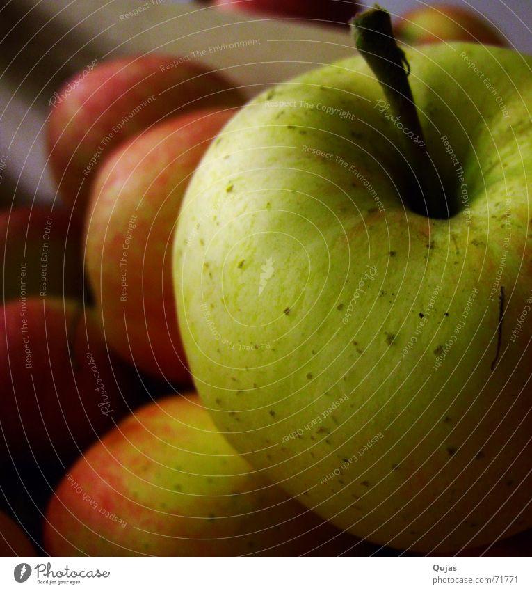 Een Appel grün rot Ernährung dunkel gold Frucht Apfel Wut Stengel lecker Ernte hängen lassen knackig fruchtig Lebensmittel