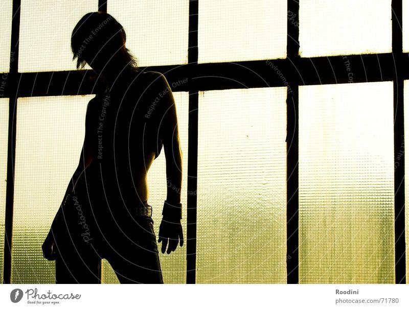 young & beautiful 2 Frau Silhouette elegant feminin Licht Fenster Hintergrundbild Hüfte Sonnenuntergang Gebäude stark selbstbewußt Mensch Profil Körper Kraft