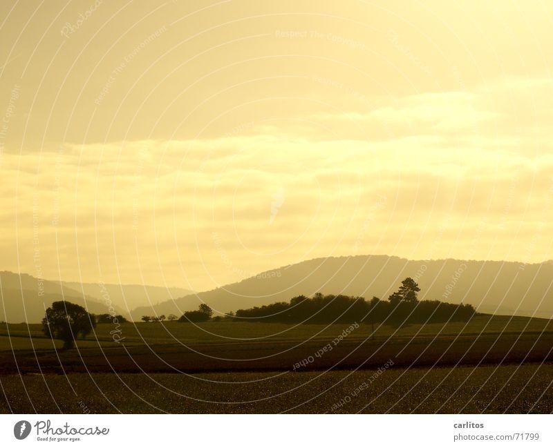 morgen Grauen Morgen Sonnenaufgang Bodennebel Gegenlicht Toskana Panorama (Aussicht) ruhig Zufriedenheit Morgendämmerung toskana für arme Glück groß
