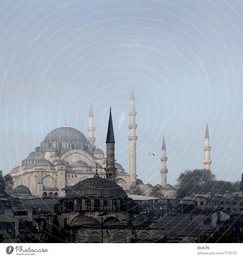Spitzig Ferien & Urlaub & Reisen Ferne Städtereise Frühling Schönes Wetter Nebel Istanbul Türkei Stadt Stadtzentrum Skyline Bauwerk Architektur Moschee Minarett