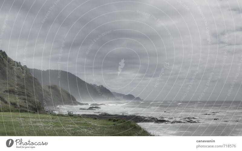 Küste Oregons Himmel Natur Ferien & Urlaub & Reisen Wasser Pflanze Meer Landschaft Wolken Ferne kalt Gras Freiheit Horizont Wellen Wind