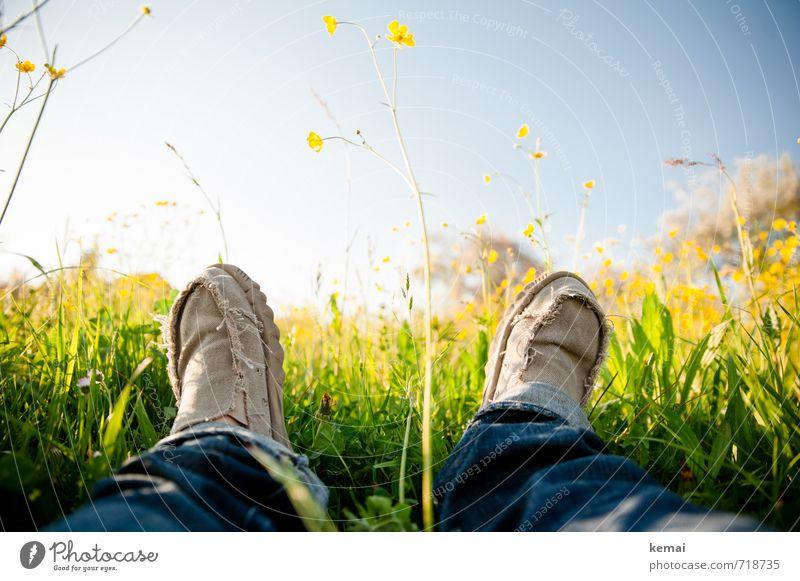Wiesenliegen deluxe Lifestyle Glück Mensch Leben Beine Fuß 1 Natur Himmel Frühling Gras Blüte Grünpflanze Jeanshose Schuhe Stoffschuhe Erholung frisch gelb grün
