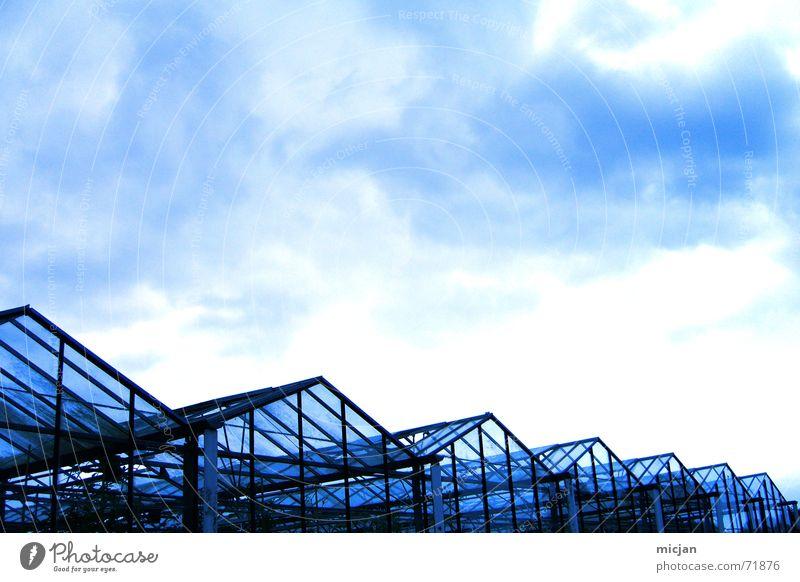 wer im glashaus ... und elefanten werfen? Himmel blau schwarz Haus Wolken dunkel Gebäude Regen Metall Glas Dach lang geheimnisvoll Reihe Bauwerk durchsichtig