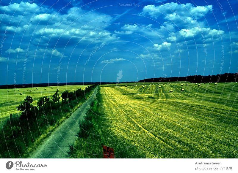 Feld Himmel blau Baum Sonne Sommer Wolken Straße Gras Hintergrundbild Schilder & Markierungen Sträucher Rasen