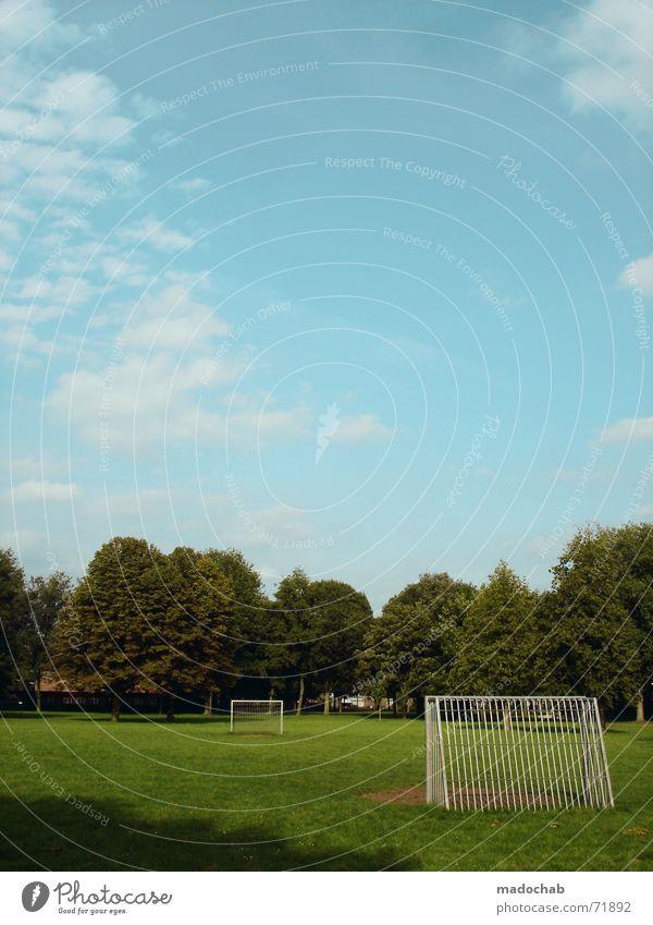 ALLTAG | park familie fussball outdoor sports nature freizeit Himmel Natur blau grün Sommer Baum Erholung Wolken Freude Wiese Bewegung Gras Sport Spielen Freiheit fliegen