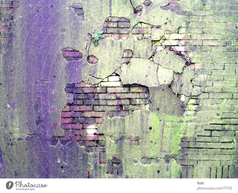 alteWand Mauer Putz Strukturen & Formen grün violett Architektur Loch Stein