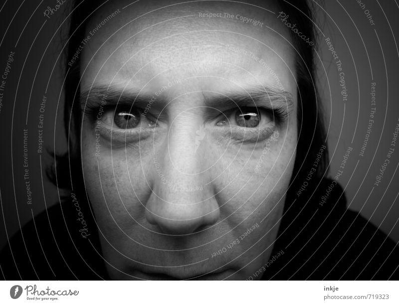 was treiben die denn da den ganzen Tag?? Lifestyle Häusliches Leben Wohnung Frau Erwachsene Gesicht Auge 1 Mensch 30-45 Jahre beobachten Blick dunkel nah