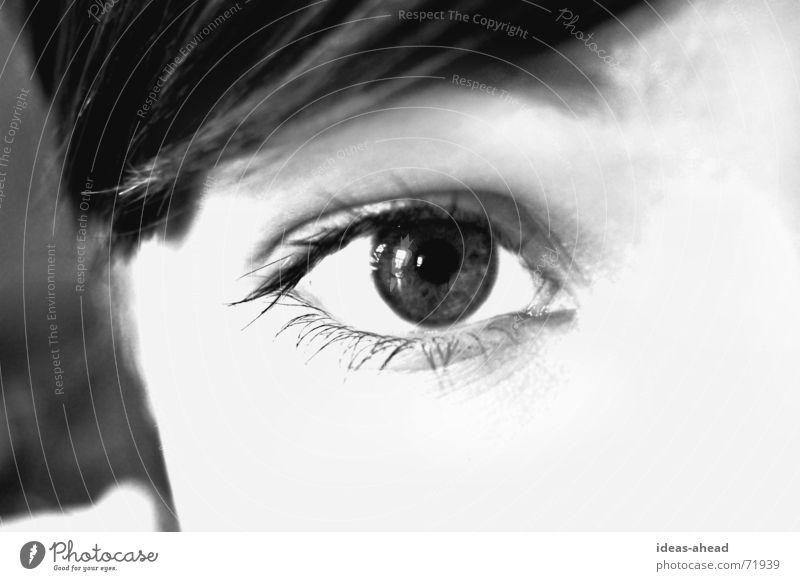 Take a look °° BW Wimpern Pupille Wunsch schwarz weiß Grauwert Eyecatcher Frau Junge Frau fordern Wachsamkeit Auge Blick Gesicht face eye Perspektive Dame