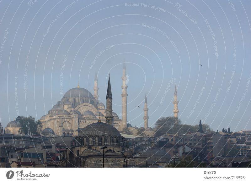Istanbul Skyline Städtereise Wolkenloser Himmel Sonnenlicht Frühling Schönes Wetter Nebel Türkei Stadt Menschenleer Haus Turm Minarett Moschee Kuppeldach
